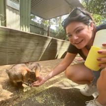 Gina Scafide's Profile on Staff Me Up